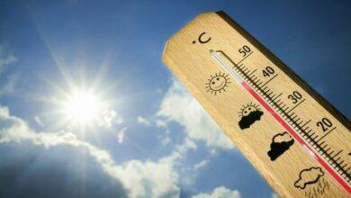 Photo of الملكي البلجيكي للأرصاد الجوية يحذر من موجة حر هذا الأسبوع