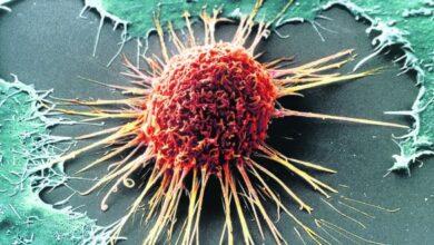 Photo of البرلمان الأوروبي يوافق على إنشاء لجنة خاصة لمكافحة السرطان